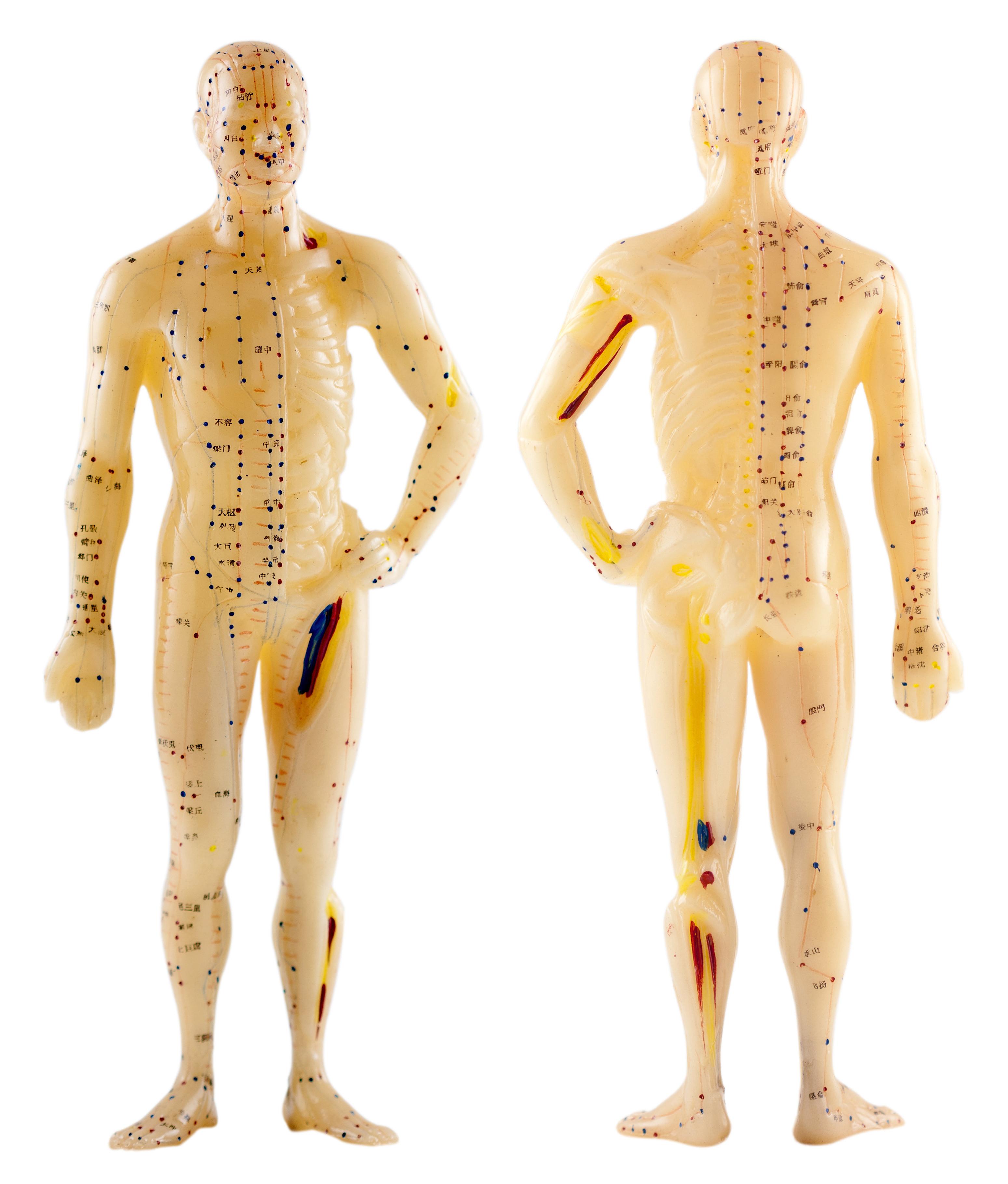 Cursus Fibromyalgie massage