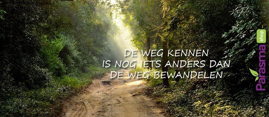 De weg kennen