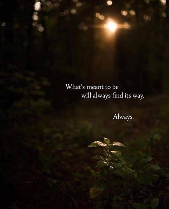 Wat hoort te zijn zal zeker zijn weg vinden